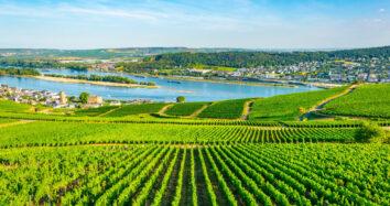 Easy bike and barge through the Middle Rhine: Aschaffenburg to Cochem
